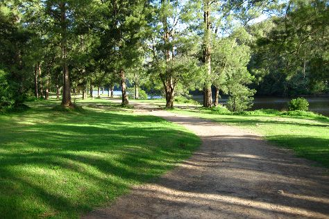 Bendeela Camping and Picnic Area, Kangaroo Valley, Australia