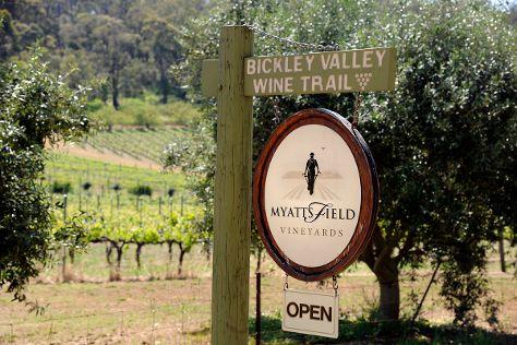 Myattsfield Vineyard, Carmel, Australia
