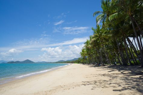 Palm Cove Beach, Palm Cove, Australia