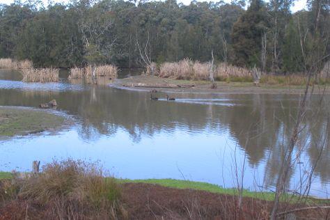 Scheyville National Park, Hawkesbury Valley, Australia