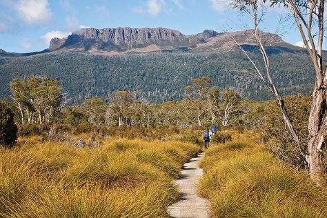 The Overland Track, Cradle Mountain-Lake St. Clair National Park, Australia