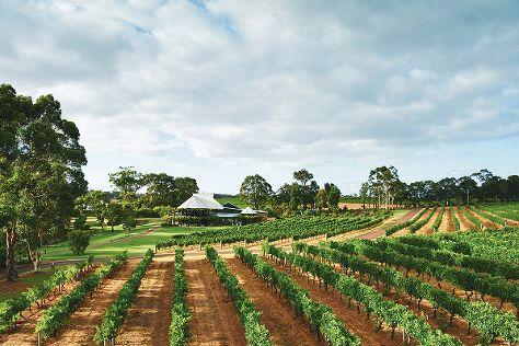 Vasse Felix Winery, Cowaramup, Australia