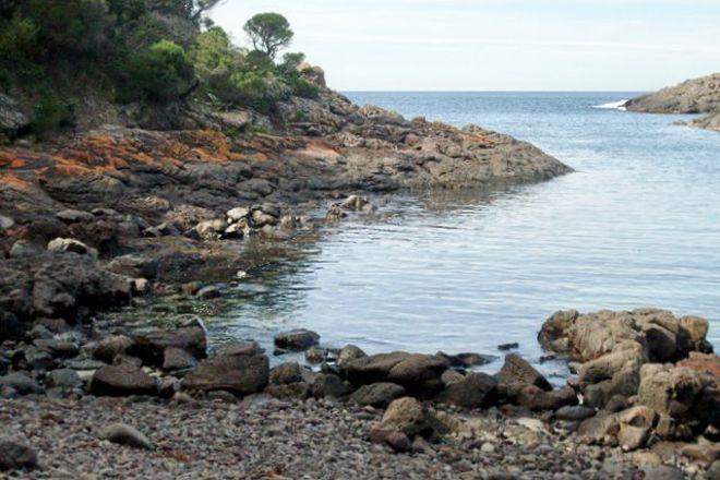 Bass Point Reserve, Shellharbour, Australia