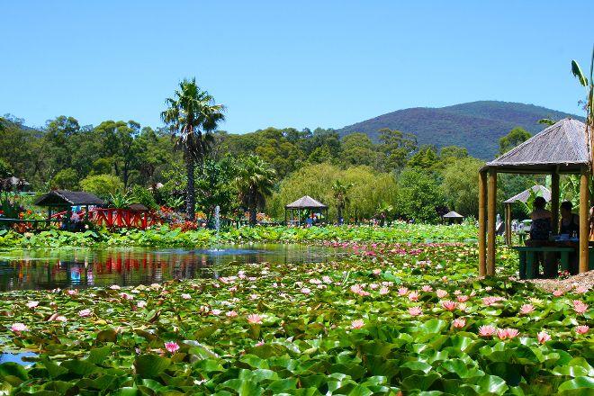 Blue Lotus Water Garden, Yarra Junction, Australia