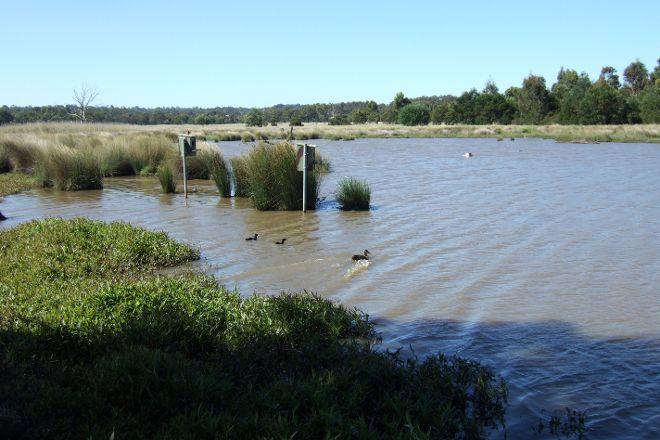 Bushy Park Wetlands, Glen Waverley, Australia