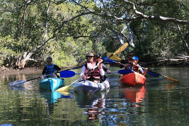 Byron Bay Eco Cruises & Kayaks, Brunswick Heads, Australia