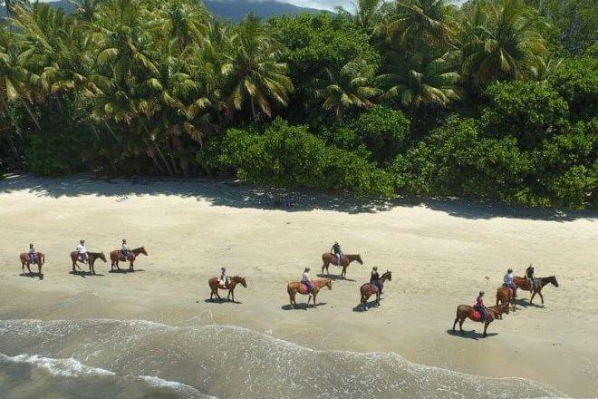Cape Trib Horse Rides, Cape Tribulation, Australia