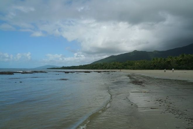Daintree National Park, Cape Tribulation, Australia