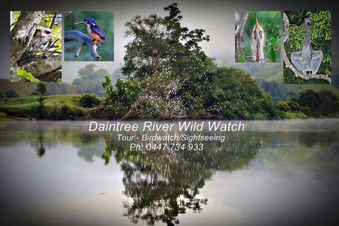 Daintree River Wild Watch, Daintree, Australia