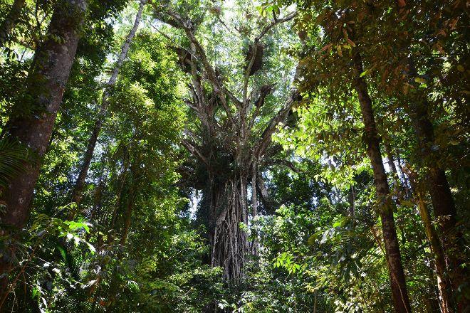FNQ Nature Tours, Cairns, Australia