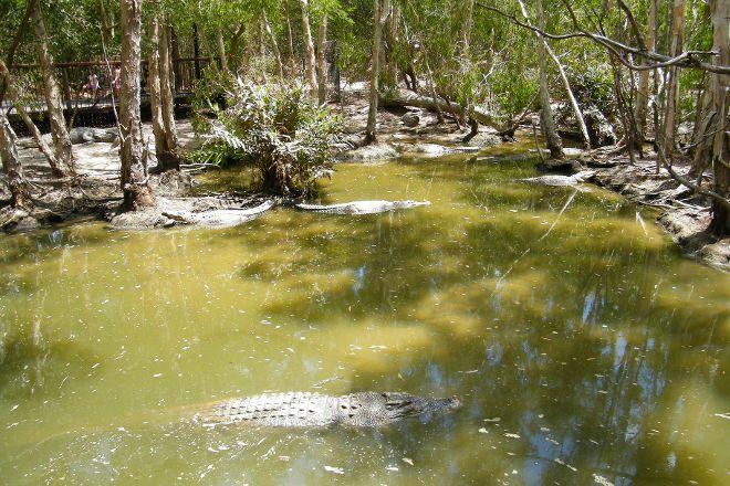 Hartley's Crocodile Adventures, Wangetti, Australia