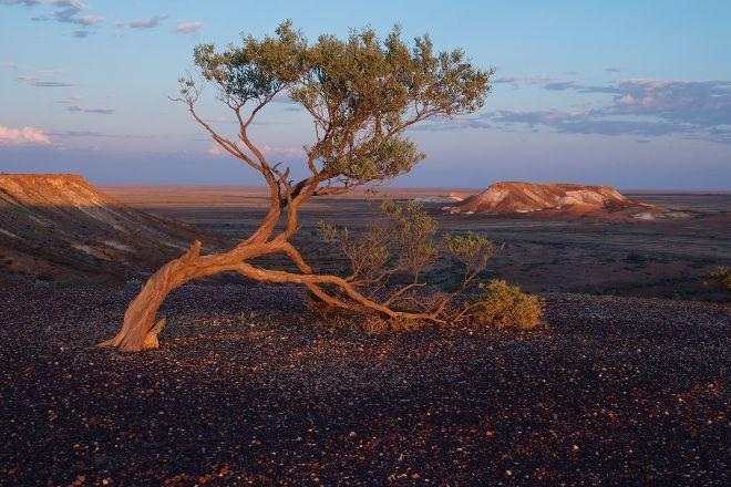 Kanku - Breakaways Conservation Park, Coober Pedy, Australia