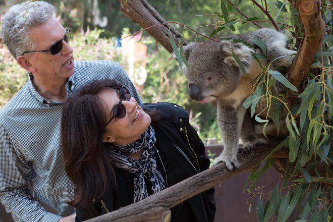 Localing Private Tours Melbourne, Melbourne, Australia