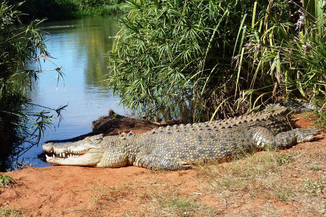 Malcolm Douglas Broome Crocodile Park, Broome, Australia