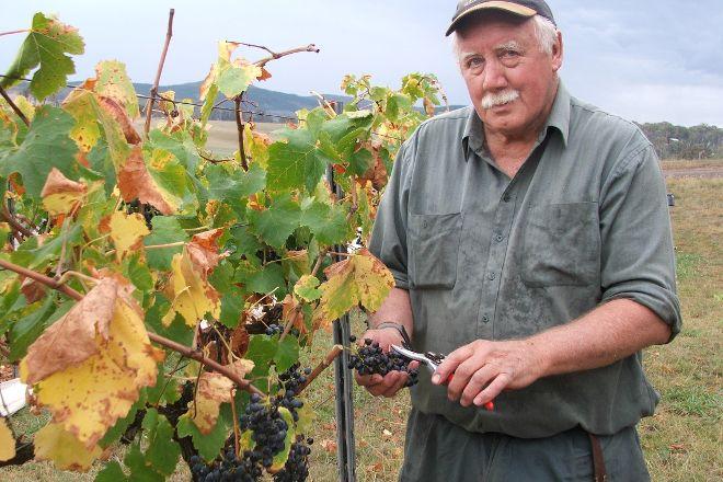 Moody's Wines, Orange, Australia