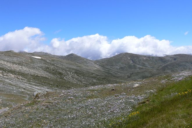 Kosciuszko National Park, Thredbo Village, Australia