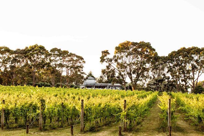 Polperro Winery, Red Hill, Australia