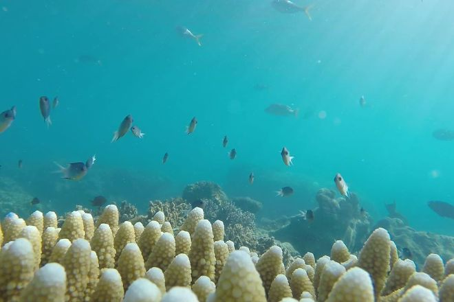 Prosail Whitsundays, Airlie Beach, Australia