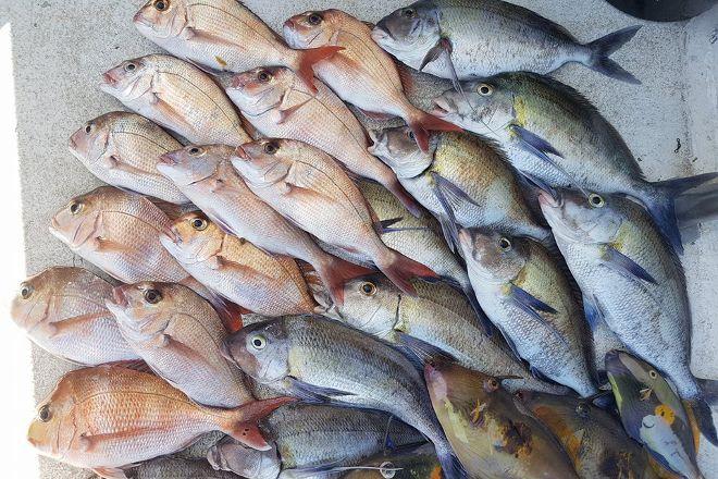 Rathlin II Fishing Charters, Merimbula, Australia