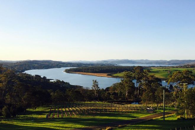 Tamar Valley Wine Tours, Launceston, Australia