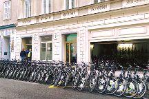 Pedal Power Bike and Segway