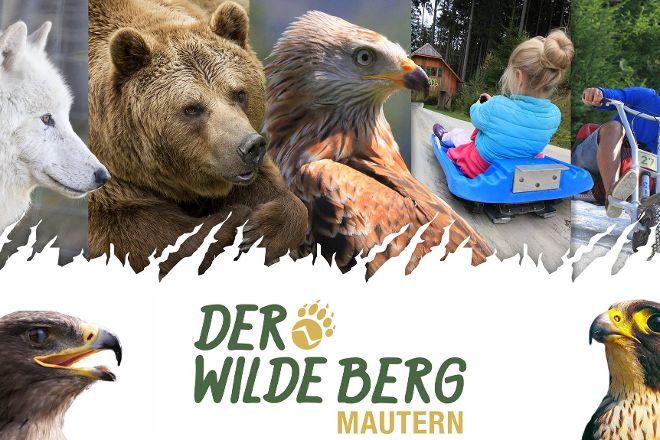 Der wilde Berg, Mautern in Steiermark, Austria
