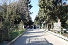 Mardakan Arboretum
