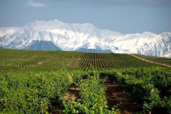 Chabiant Winery, Ismayilli, Azerbaijan