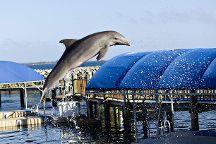Blue Lagoon Island, Nassau, Bahamas