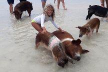 Experience Grand Bahama Island with Hida, Freeport, Bahamas