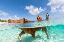 Sandy Toes, Nassau, Bahamas