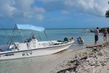 West End Ecology Tours, West End, Bahamas