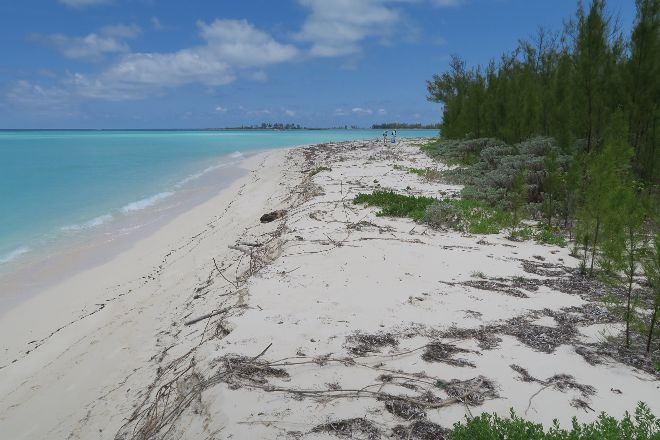 Island Adventures with Lincoln Jones, Green Turtle Cay, Bahamas