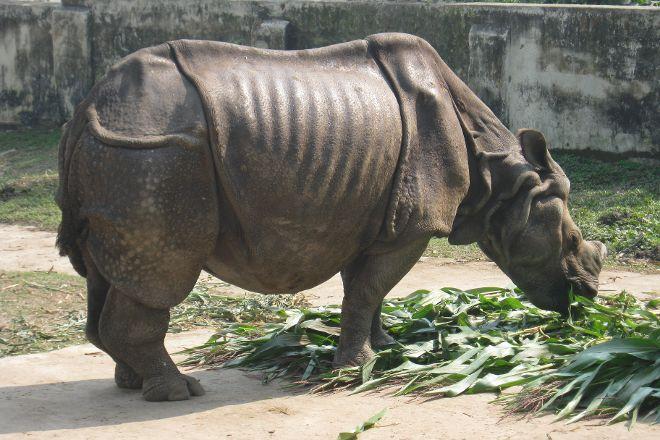 Dhaka Zoo, Dhaka City, Bangladesh