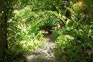 Andromeda Botanic Gardens