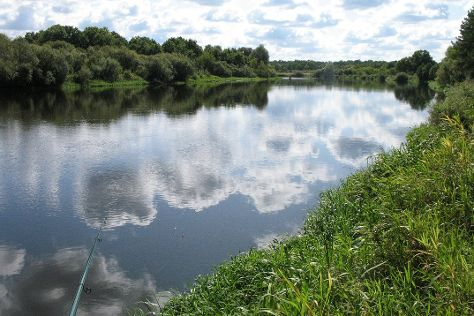 Berezina Biosphere Reserve, Domzharytsy, Belarus