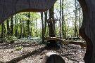 Ecopark Adventures
