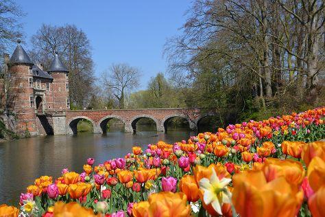 Floralia - Spring Flower Show, Groot-Bijgaarden, Belgium