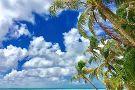 Ranguana Tropical Island Experience