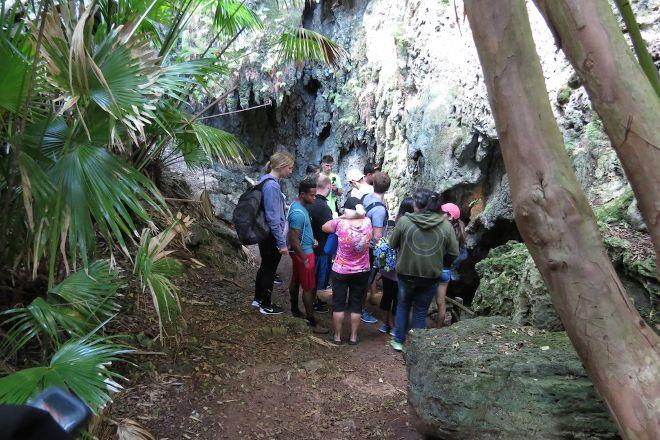 Tom Moore's Jungle, Hamilton Parish, Bermuda