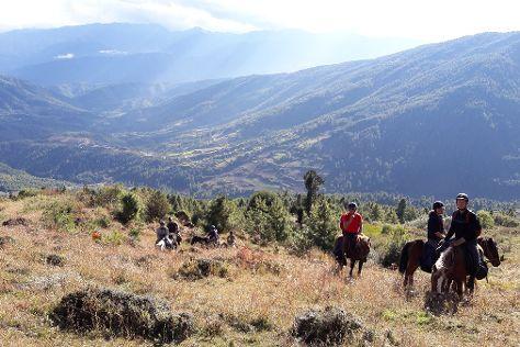 Wind Horse Ranch & Riding Club, Bumthang, Bhutan