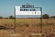 Barba Azul Reserve, Trinidad, Bolivia