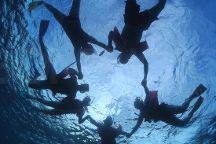 Sea Cow Snorkeling Bonaire, Kralendijk, Bonaire