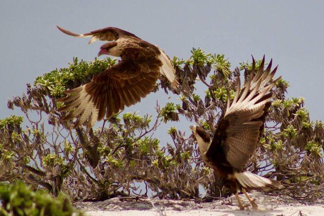 Bon Tuk Eco Tours Bonaire, Kralendijk, Bonaire