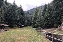 Skakavac, Sarajevo Canton, Bosnia and Herzegovina