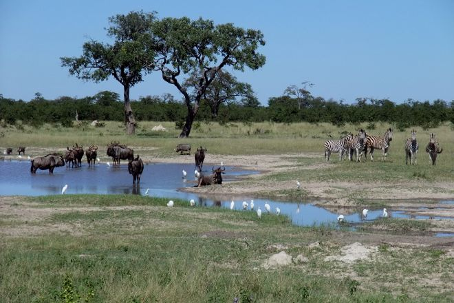 Serondela Reserve, Chobe National Park, Botswana