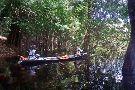 Aguia Amazonas Turismo - Day Tours