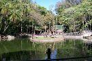 Bosque dos Jequitibas