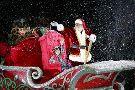 Espectaculos de Natal Luz