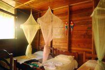 Amazon Gero Tours, Manaus, Brazil